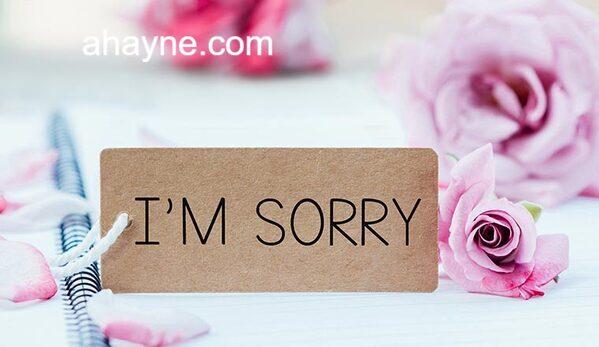 cách viết email xin lỗi sếp bằng tiếng anh
