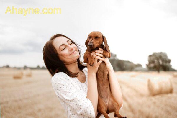 lưu ý khi huấn luyện chó tuyệt đối không được nóng nảy.