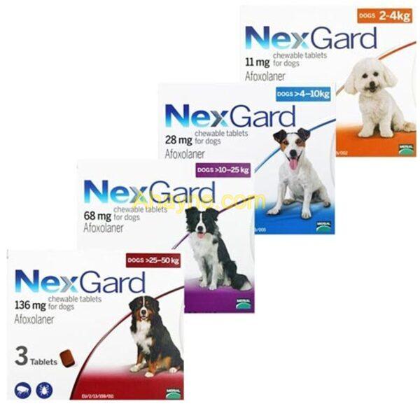 viên nhai trị ghẻ cho chó là cách trị ghẻ tối ưu nhất được nhiều người tin dùng